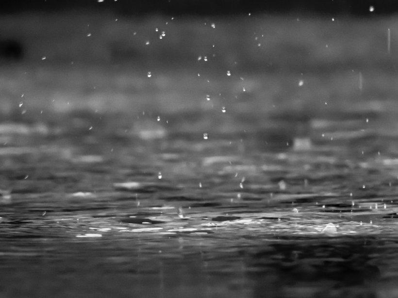 Ploaia conține bacterii și viruși. Miliarde cad pe suprafaţa planetei în fiecare moment
