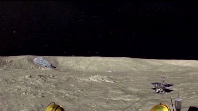Premieră absolută! Un vlăstar de bumbac a încolţit pe Lună