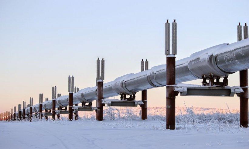 Presă: România încearcă să încetinească proiectul Nord Stream 2