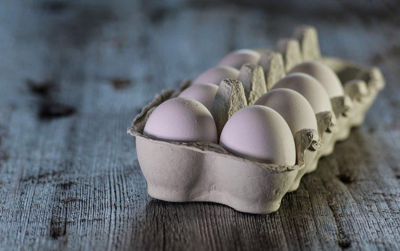 Ouă contaminate cu o substanţă interzisă, descoperite la o fermă avicolă din judeţul Olt