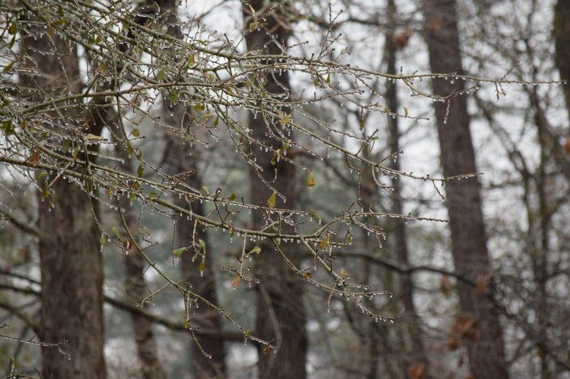 Motivul pentru care apare ploaia înghețată în România