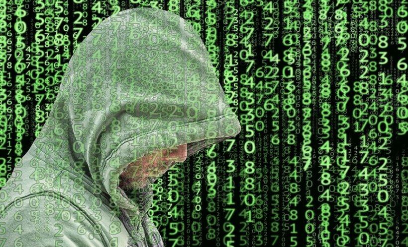 13 hackeri au fost ridicaţi de poliţişti şi duși la audieri. Atacau site-uri la comandă, în schimbul unor sume de bani