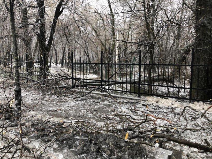 """O femeie dintr-un bloc din Petroșani a observat ceva ciudat lângă tomberoane și s-a apropiat. A încremenit. A sunat imediat la poliție: """"Este înfiorător"""""""