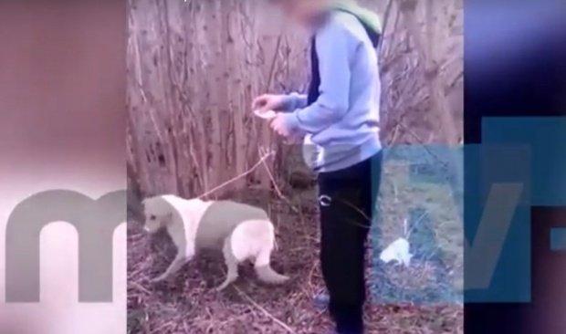 """Bunicul tânărului din Dâmbovița care a incendiat un câine a mărturisit: """"Nu putea să îi dea una cu toporul în cap?"""""""