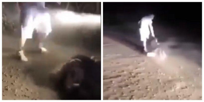 Tânără bătută cu pumnii și picioarele pe un drum din Dej. Îl imploră pe agresor să se oprească, dar acesta o lovește și mai tare. Imagini scandaloase