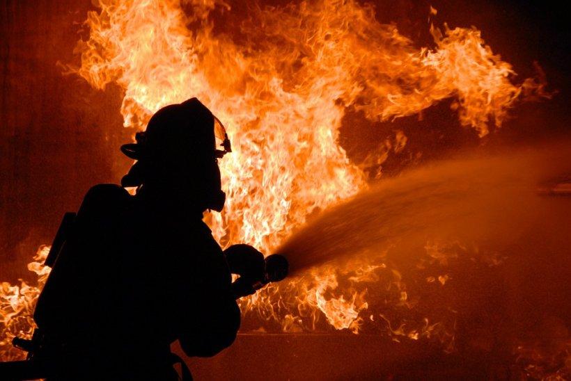 O hală din sectorul 2 al Capitalei, cuprinsă de flăcări. Pompierii s-au luptat patru ore să stingă incendiul