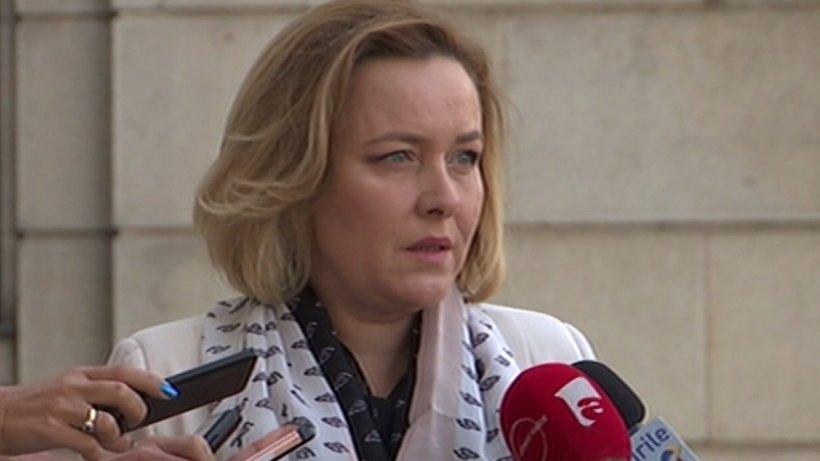Carmen Dan,planantidezinformare pentru europarlamentare