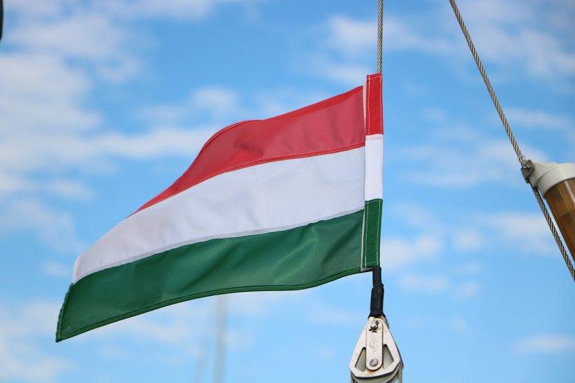 Tribunalul a anulat amenzile aplicate primarului din Sfântu Gheorghe pentru arborarea steagului Ungariei