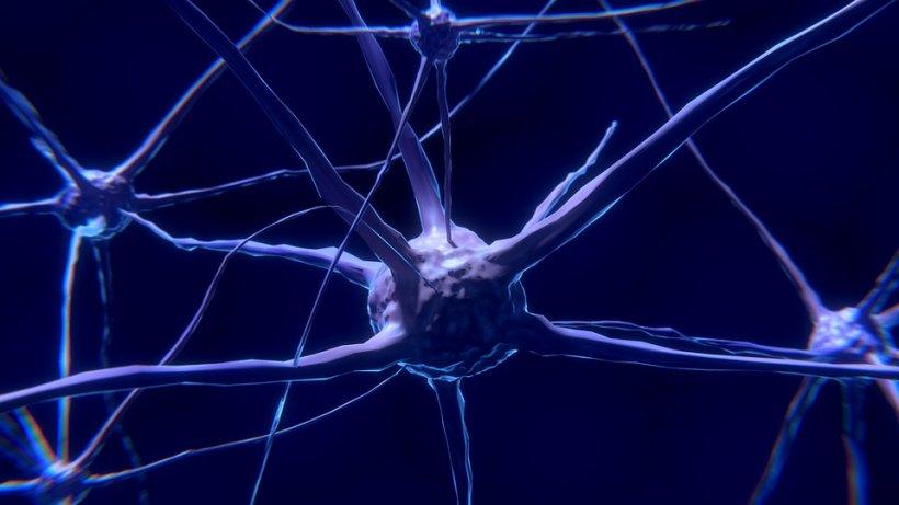 """Neurolog român celebru: """"Ne trezim cu tumori și nu știm de unde au venit. Aşa au venit: din ce vorbim, ce gândim, ce simţim şi ce facem"""""""