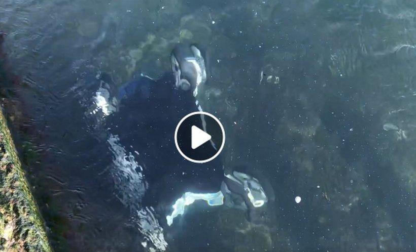 Un copil aflat în căruţ a fost aruncat în Marea Neagră de vântul puternic - VIDEO