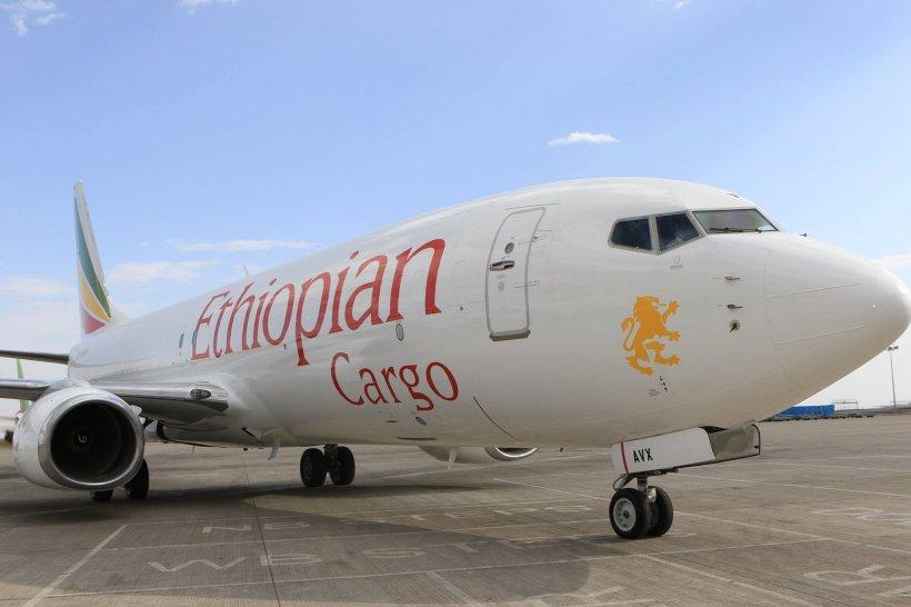 """Analiza unei cutii negre a avionului Ethiopian Airlines indică """"similarităţi clare"""" cu accidentul Lion Air"""