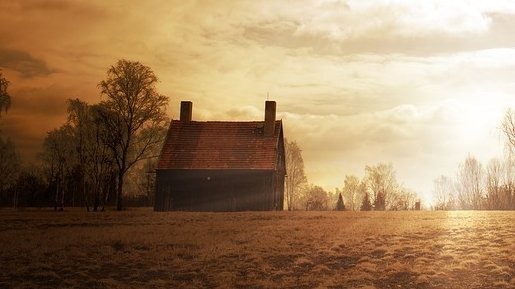 Gemenii au început să se certe pentru casa părintească, dar nimeni nu se aștepta la ce avea să urmeze