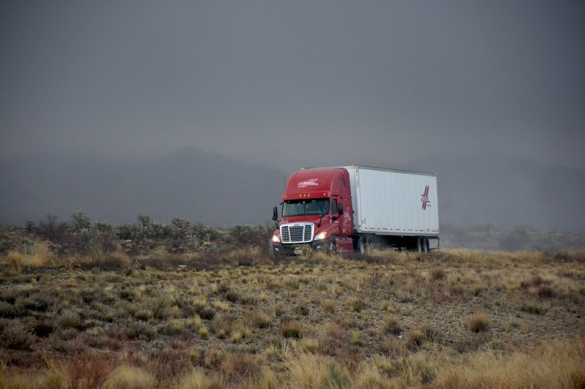 Mihai e șofer în Anglia. Ce au descoperit autoritățiile în camionul condus de el. Este de necrezut
