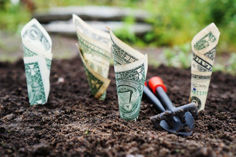 Împrumuturi pentru a-ţi transforma visele în realitate (P)