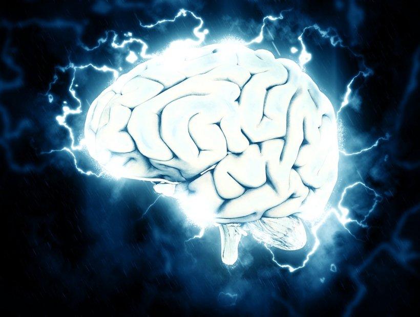 Studiu: Creierul are nevoie de o capacitate de stocare echivalentă cu 1,5 MB pentru a stăpâni limba maternă