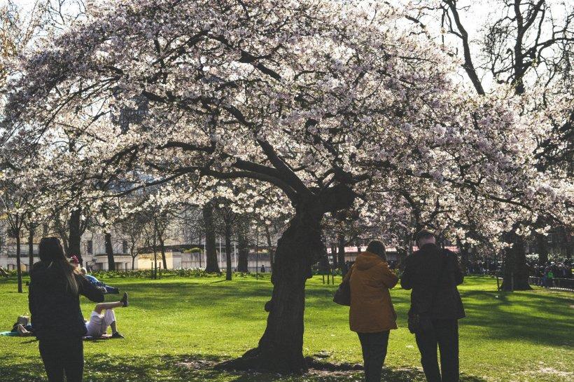 VREMEA. Prognoză meteo pentru 1-22 aprilie. Ce îi așteaptă pe români în a doua lună de primăvară