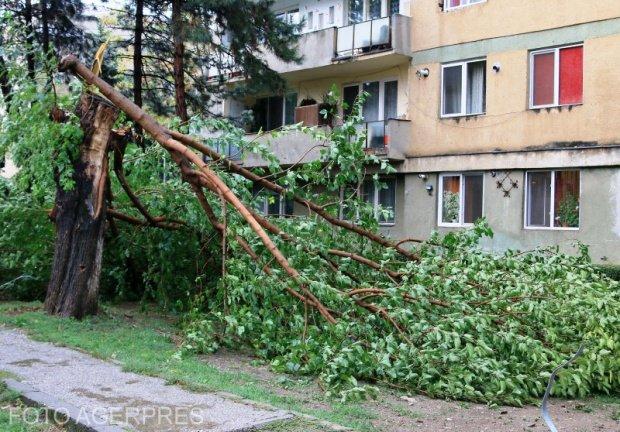Alertă METEO. Fenomene periculoase în localităţi din Timiş şi Caraş-Severin. Se întâmplă până la ora 18:00
