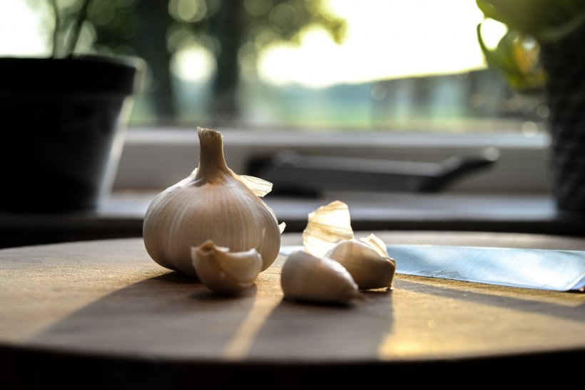 Puțini români știu asta. De unde vine cuvântul 'mujdei'? Dar de ce spunem 'cățel de usturoi'?