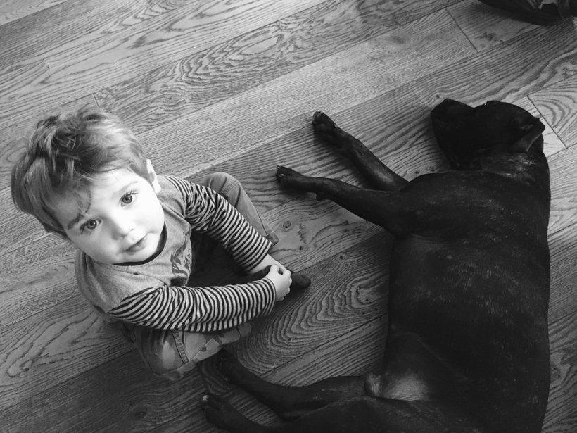 (P) Top 11 cele mai prietenoase rase de caini pentru copii, conform dresorului Cesar Milan