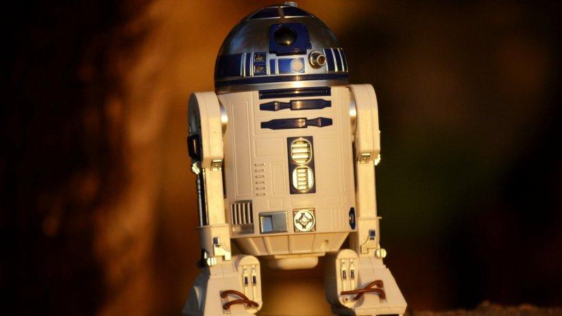 """S-a îndrăgostit de un robot și plănuiește să se căsătorească și să plece împreună într-o vacanță în Florida. """"Dragostea mea nu a durat niciodată atât de mult ca cea pentru RoboTroll"""""""
