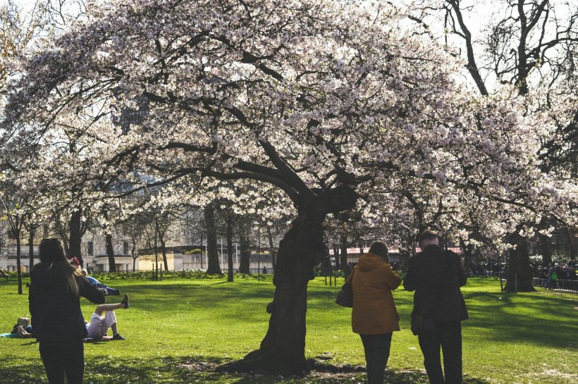 VREMEA. Prognoză meteo pentru weekendul 20-21 aprilie. Cum trebuie să se pregătească oamenii de Florii