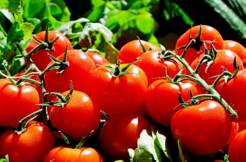 Cât de scumpe sunt primele legume românești de anul acesta. Prețuri de lux