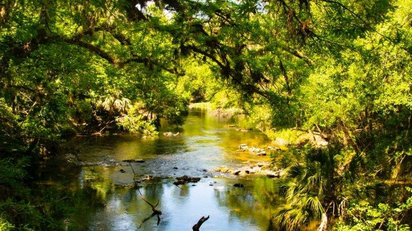 Stăteau liniștiți pe malul unui râu și depănau amintiri când, la un moment dat, ceva l-a tras pe bărbat sub apă. Sora lui nu a mai putut opri tragedia care avea să urmeze