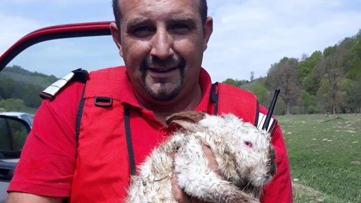 Nelu, un pompier din Bistrița, a salvat un iepuraș din flăcări. I-a pus o mască de oxigen pe față FOTO