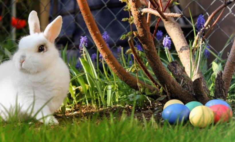 PAŞTE 2019. Tradiţii şi obiceiuri în cea de-a doua zi de Paşte
