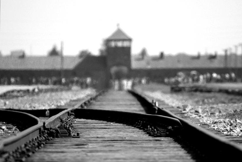 Holocaustul, pagina neagră din istoria omenirii. Mărturii îngrozitoare făcute de supraviețuitori