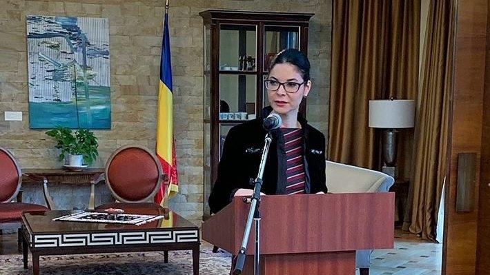 Ana Birchall, ministrul interimar al Justiției: Procedura de selecție, reluată 16