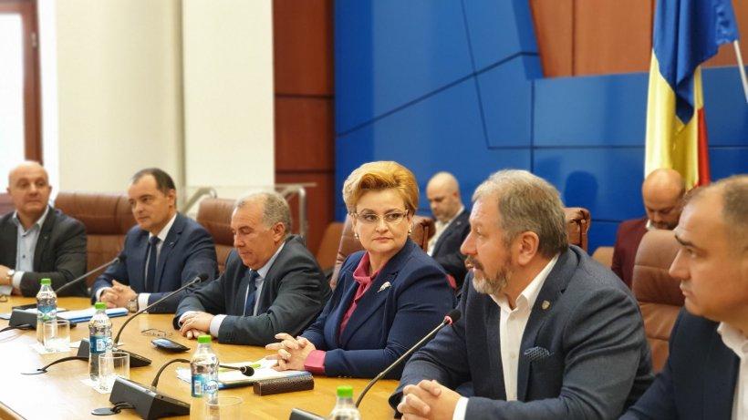 Guvernul Dăncilă vrea să extindă programul Rabla pentru electrocasnice și pentru instituțiile statului