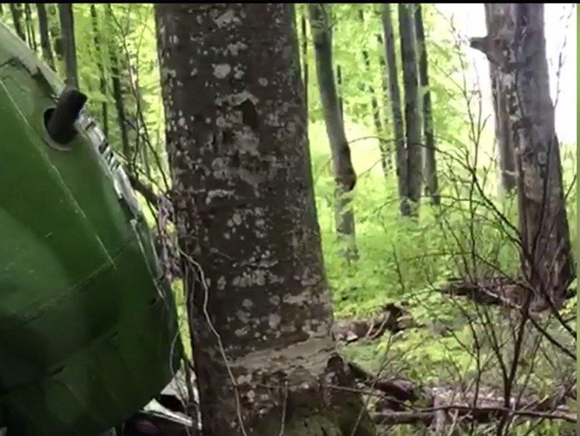 Descoperire șocantă într-o pădure din România. Un cioban a alertat autoritățile când a văzut dezastrul