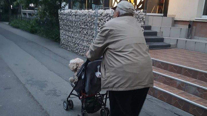 """Oana se afla pe o stradă din București, când a văzut ceva extrem de emoționant. A aflat o poveste uluitoare. """"M-au topit"""""""
