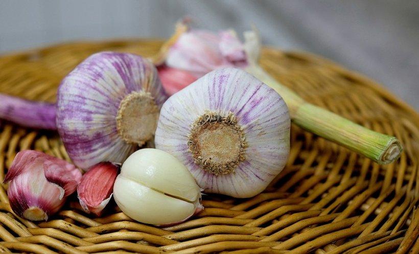 Guvernul Dăncilă triplează sprijinul pentru fermierii care cultivă usturoi: 3.000 de euro pe hectar