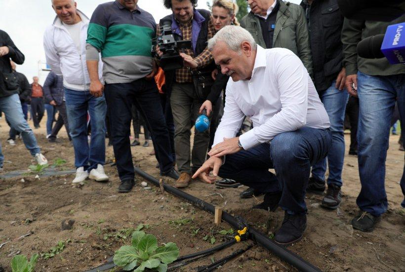 PSD promite facilități bancare substanțiale pentru agricultorii care își fac solarii