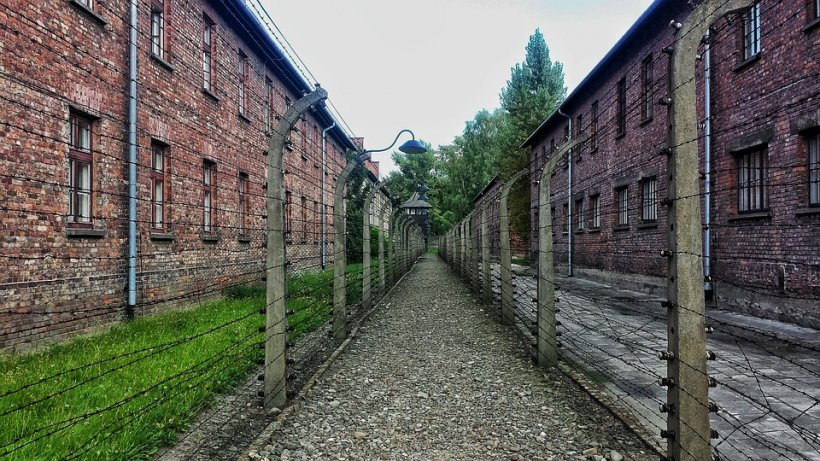 Voi cu Voicu. Holocaustul, cel mai mare dezastru din istoria civilizației moderne