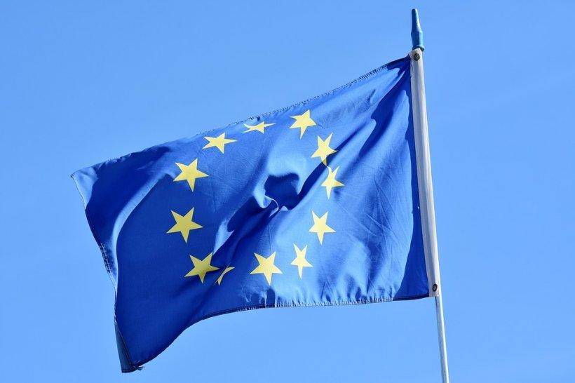 Listele negre ale României Curate pentru alegerile europarlamentare