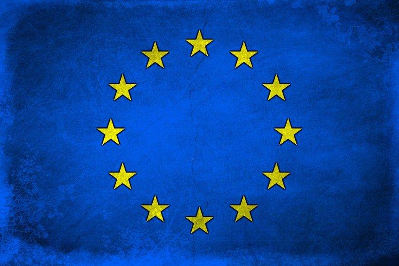 Rezultate Alegeri europarlamentare 2019. Cinci lucruri care merită remarcate 72