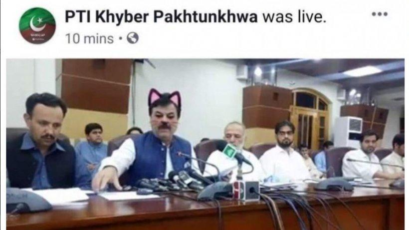 """Un ministru a activat filtrul """"pisică"""" în timpul transmisiunii live. Spectatorii au izbucnit în hohote. Cum arătau parlamentarii - FOTO"""