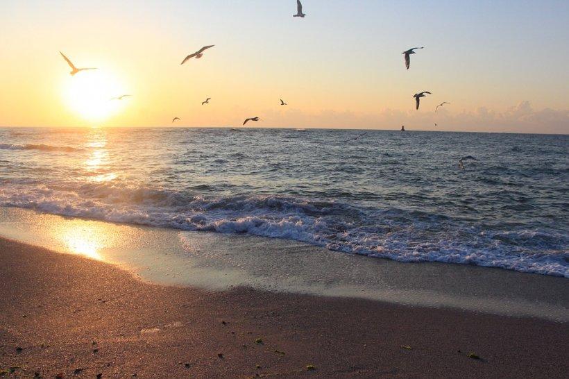 Trupul neînsuflețit al unei femei, văzut în Marea Neagră. Motivul pentru care scafandrii nu au putut interveni