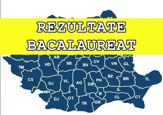 REZULTATE BAC 2019. Judeţul Cluj pe primul loc, Ilfov pe ultimul. Anunțul făcut de ministrul Educației
