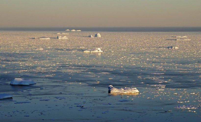 Încălzirea globală are urmări dramatice. Gheața se topește într-un ritm alarmant în regiunea arctică
