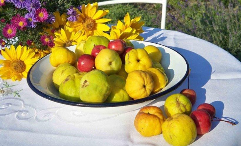 Fructul miraculos al toamnei care face minuni în organism. Scade colesterolul, tensiunea, previne depresia și ne stimulează imunitatea