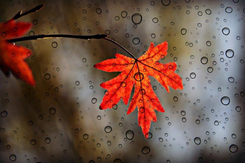Prognoza meteo 15 septembrie. Se schimbă vremea