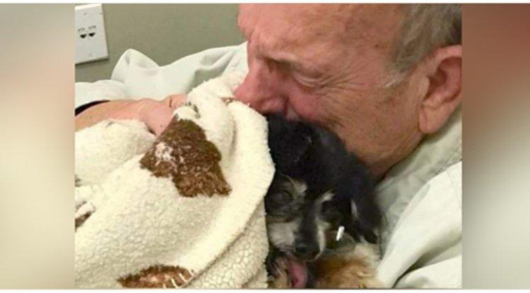 Nu avea mulți bani și abia trăia de pe o zi pe alta, dar timp de 16 ani, și-a dedicat viața unui câine, care l-a iubit necondiționat. În ziua când animalul a murit, nu s-a mai putut opri din plâns