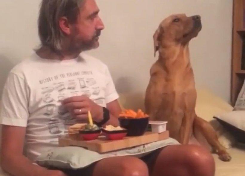 Cățelul educat care a cucerit internetul! Cum se comportă atunci când își vede stăpânul mâncând (VIDEO)