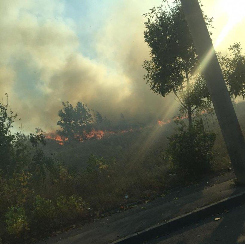 Incendiul de vegetaţie din București a fost stins. S-a reluat traficul pe Splaiul Unirii