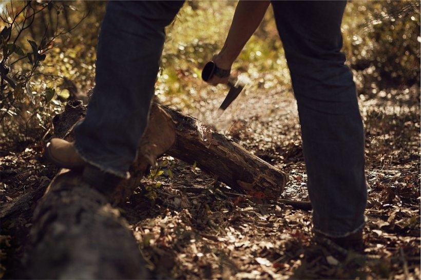 Tiberiu se pregătea să facă un grătar și a început să taie câteva lemne. La un moment dat a simțit cum începe să-i tremure mâna. A lovit și atunci a văzut minunea: Este foarte clar! (FOTO)