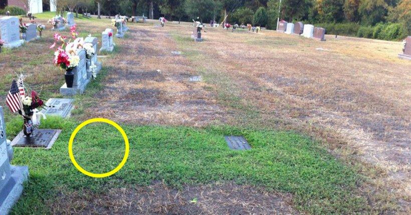 Caz tulburător! De ce iarba era verde doar pe un mormânt, în timp ce pe celelalte domnea uscăciunea 817